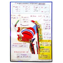 """Плакат настенный """"17 второстепенных махраджей - примеры"""" (размер: 48х69)"""